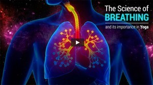 videoklip-breathing-yoga-science